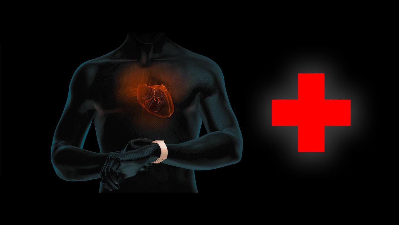 Mennyire mér pontosan az Apple Watch EKG-ja és milyen betegségeket előzhetünk meg vele – egy orvos véleménye